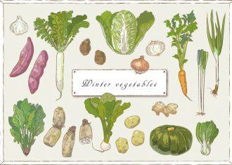 冬野菜 季節の野菜を取り入れて